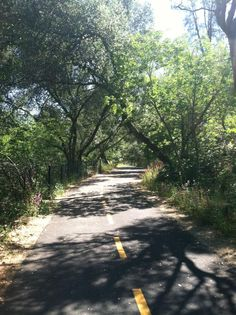 American River Bicycle Trail (Sacramento, CA): Address, Attraction Reviews - TripAdvisor