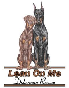 Lean On Me #Doberman Rescue