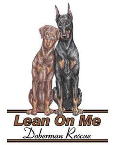 Lean On Me  - Doberman Rescue