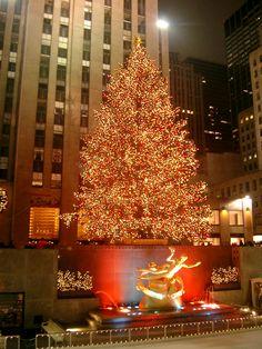 I miss christmas in NY! #winter #NY #tree