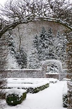 Winter Garden. See? Winter can be beautiful too