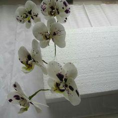 Sugar orchids, gumpaste orchids, orchid, sugarflowers