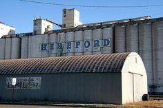 Hereford Grain painted company sign on grain elevators, Hereford , Texas Western Photography, County Seat, Paint Companies, Hotel Motel, Texas Homes, My Town, Elevator, Barns