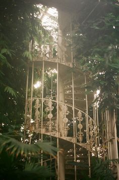 gh0st-ly:  Kew Gardens by inmost_light on Flickr.this looks a bit like the staircase in the city of bones greenhouse scene