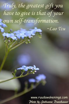 Truly, the greatest gift you have to give is that of your own self-transformation - Lao Tzu Inspirational quotes - ruudawakenings  www.ruudawakenings.com www.facebook.com/ruudawakenings