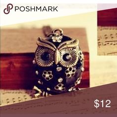 ❤️Bronze Black Owl Necklace❤️ New in packaging. Jewelry Necklaces