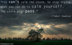 You can't calm the storm. so stop trying. What you can do is calm yourself. The storm will pass