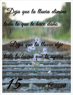 Frase 15: Deja que la lluvia elimine todo lo que te hace daño. Deja que la lluvia deje todo lo bueno que te espera