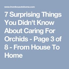 7 Surprising Things You Didn't Know About Caring For Orchids - Page 3 of 8 - From House To Home