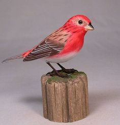 Carved Purple Finch