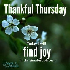Good morning , have a wonderful day my friend. Nice Good Morning Images, Good Night I Love You, Good Morning Good Night, Morning Wish, Thursday Greetings, Happy Thursday Quotes, Thankful Thursday, Happy Tuesday Morning, Good Morning Facebook