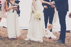 thoughts on marriage via bluebird blog