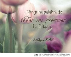 Amós 5:4 Buscadme, y viviréis.♔