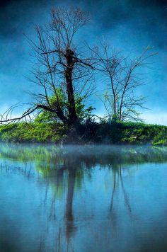 ✯ Morning Mist