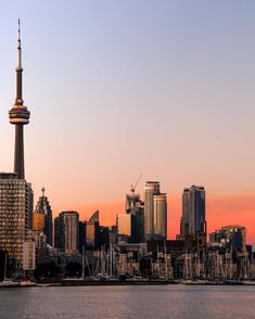 Seattle Skyline, New York Skyline, Cn Tower, Travel, Viajes, Destinations, Traveling, Trips
