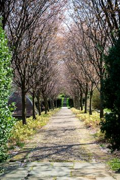 dumbarton oaks in georgetown - Postcards from Rachel