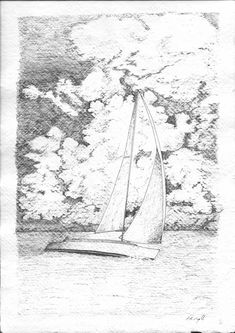 Sailing In. Led Pencils, Pencil And Paper, Cockatoo, Artist Art, Traditional Art, Sketching, Sailing, Art Gallery, Creativity