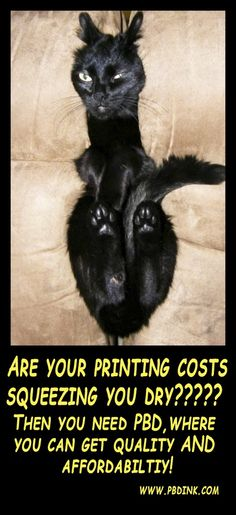 Book Printing Companies, Magazines, Cats, Books, Prints, Movie Posters, Journals, Gatos, Libros