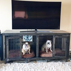 ebony indoor double kennel