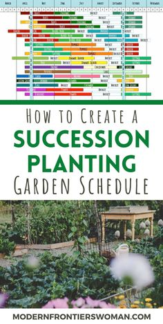 How to Make a Succession Garden Schedule - - Do you wish you could get more out of your vegetable garden space? By creating a succession planting schedule, you can! Increase yields from all your crops with proper planning and foresight. Magic Garden, Veg Garden, Vegetable Garden Design, Edible Garden, Garden Beds, Garden Plants, Veggie Gardens, Vegetable Gardening, Flowering Plants