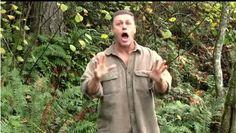 SUCCESS SHARING PHENOMENON :   Are You Ready to BOBL ?              ...
