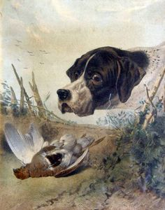 Engraving of a Pointer by H T Ryall- Engraving of a Pointer by H T Ryall (English, 1811-1867) after Richard Ansdell (English, 1815-1855)