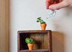 How-Tuesday: Micro Planters on Etsy I LOVE TINY THINGS