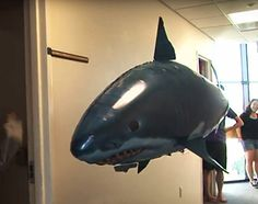 Remote Control Flying Shark – Cool Toy!