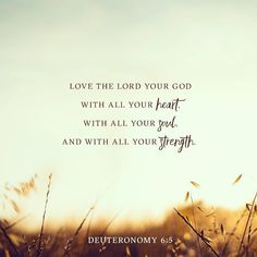 Hear, O Israel: The Lord our God, the Lord is one. Love the Lord your God with all your heart and with all your soul and with all your strength. -Deuteronomy 6:4‭-‬5 NIV•••• #bible #quote