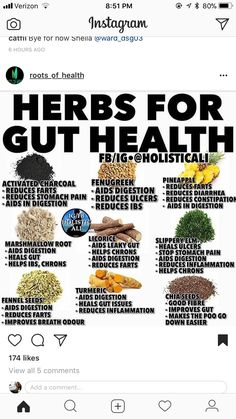Gut Health, Holistic Health Tips for Beginners Cold Home Remedies, Natural Health Remedies, Herbal Remedies, Healing Herbs, Medicinal Herbs, Natural Healing, Aromatic Herbs, Health And Nutrition, Health Tips