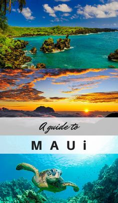 Hawaii calling? One of our writers went on relaxing trip to the beautiful island of Maui. Here's her insider guide for things to do in on the island...