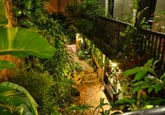 I love the amount of plants in this courtyard. I think I'd gladly have UV lights or a glass roof just so I could do this!