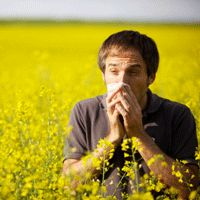 of running with allergies