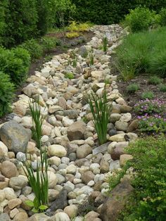 Diy Dry Creek Landscaping Ideas With Pictures! Learn More. A dry creek .Learn More. A dry creek . River Rock Landscaping, Landscaping With Rocks, Front Yard Landscaping, Backyard Landscaping, Landscaping Design, Inexpensive Landscaping, Luxury Landscaping, Dry Riverbed Landscaping, Backyard Privacy