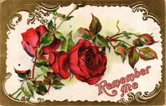 DR JIM STAMPS US REMEMBER ME EMBOSSED ROSES POSTCARD OHIO 1911