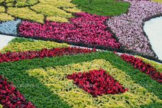 Beautiful Flower Gardens Most
