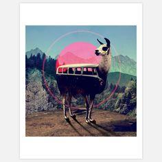 Llama Print by Ali Gulec (Fab)