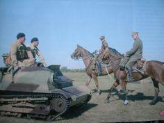 Polish lancers, pin by Paolo Marzioli Poland Ww2, War Horses, Ww2 Photos, Model Tanks, Ww2 Tanks, World Of Tanks, Panzer, World History, World War Two