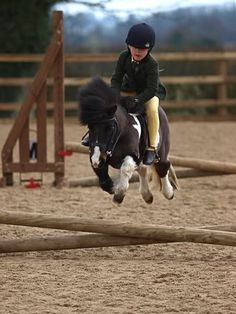 my daughter will be able to jump a horse by the time she is 4. by Mopar Mo