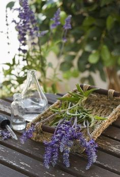 The culled lavender pieces will be used for vases with other flowers.....