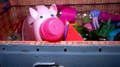 Regina Lustig verwandelt in ihrer Werkstatt in Wien-Ottakring auf originelle Art und Weise Hausmüll zu Gebrauchsgegenständen. Piggy Bank, City Life, Workshop, Packaging, Funny, Money Box, Savings Jar