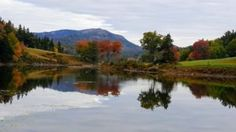 A look at the fall foliage on MDI with Martha Stewart: