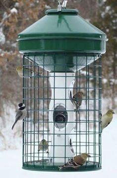 Backyard Bird Feeder - The 10 Best Bird Feeders for Your Wintertime Yard - Bob Vila