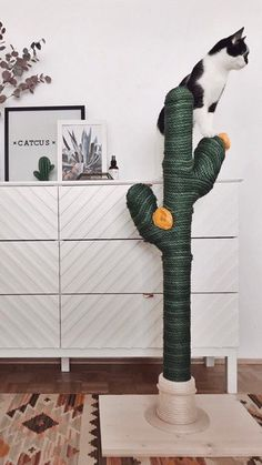 Have you seen that trendy new cat tree that look like a cactus? If you're wondering where to get one for your kitty, keep reading! Sisal, Cat Tree Designs, Diy Cat Tower, Primary And Secondary Colors, Cat Scratching Post, Look Boho, Cat Scratcher, Cat Room, Animal Projects