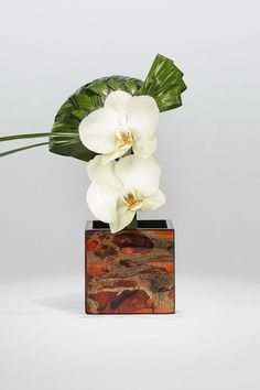 White phalenopsis and coconut leaves on marble laquer vase Armani/Fiori