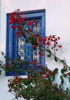 Window/ Sidi Bou Said - Tunisia