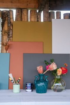 Tranquil Dawn is the Color of the Year 2020 by the Flexa color experts. Why this color? And that the trend is to combine color? Read it here.