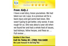 I have a sad story, brace yourselves. We had taken our cat, Laya, to a previous vet for a...