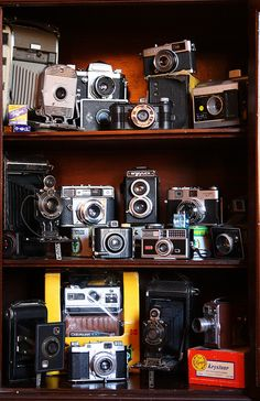 I'd love to devote an area to my vintage camera collection.