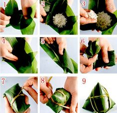 Steps to make a chinese traditional Dragon Boat Festival food Finger Food Catering, Malay Food, Asian Street Food, Chinese Dumplings, Leaf Crafts, Food Garnishes, Malaysian Food, Food Packaging Design, Wrap Recipes